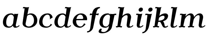 AntykwaTorunskaMed-Italic Font LOWERCASE
