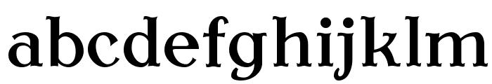 AntykwaTorunskaMed-Regular Font LOWERCASE