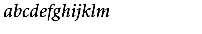 Antium Semi Condensed Bold Italic Font LOWERCASE