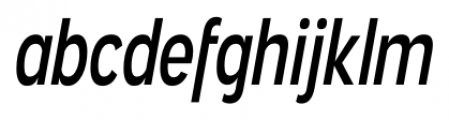 Angostura Italic Font LOWERCASE