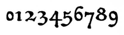 Antiquarian Regular Font OTHER CHARS