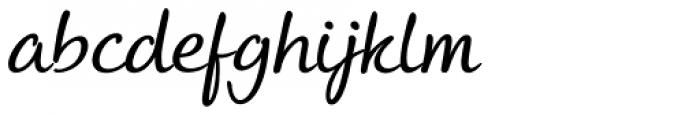 Andrea II Script Slant Nib Font LOWERCASE