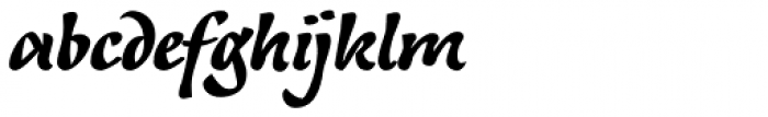 Andrij Script Black Font LOWERCASE
