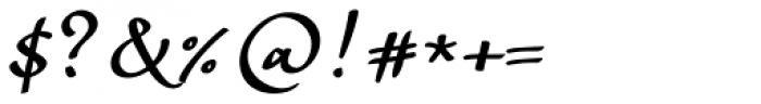 Andrij Script Cyrillic DemiBold Font OTHER CHARS
