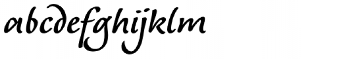 Andrij Script Cyrillic DemiBold Font LOWERCASE