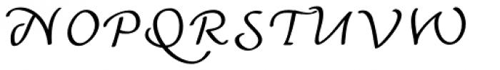 Andrij Script Font UPPERCASE