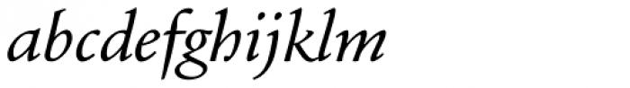 Andron 1 Greek Corpus Italic Font LOWERCASE