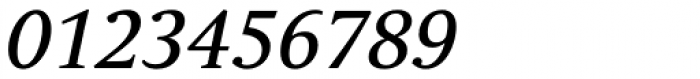 Andulka Text Italic Font OTHER CHARS