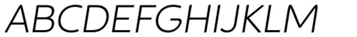 Animo Alt Light Italic Font UPPERCASE