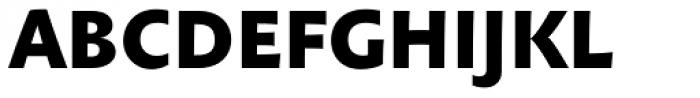 Anselm Sans Medium Bold Font UPPERCASE