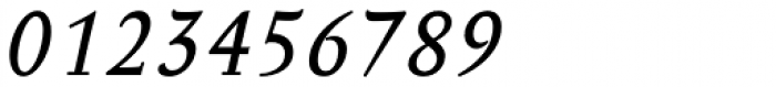 Anselm Ten Italic Font OTHER CHARS