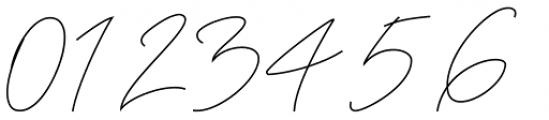 Anthoni Signature Regular Font OTHER CHARS