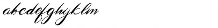 Antika Italic Font LOWERCASE