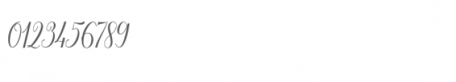 Aneisha Script Bold Font OTHER CHARS