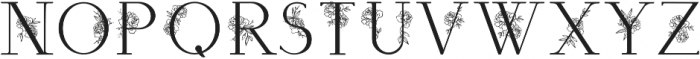 Apothecary Regular otf (400) Font UPPERCASE