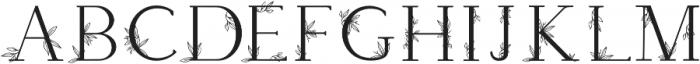 Apothecary Regular otf (400) Font LOWERCASE