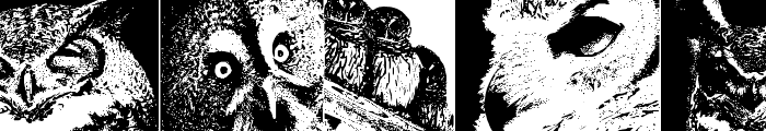 AParliamentofOwls Font LOWERCASE