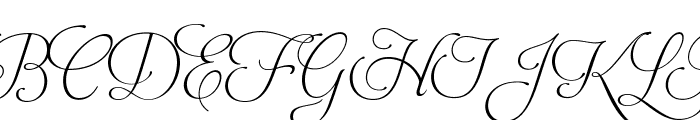 AphroditeSlimPro Font UPPERCASE