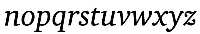 Apparatus SIL Italic Font LOWERCASE