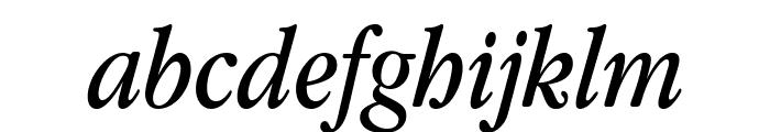 Apple Garamond Italic Font LOWERCASE