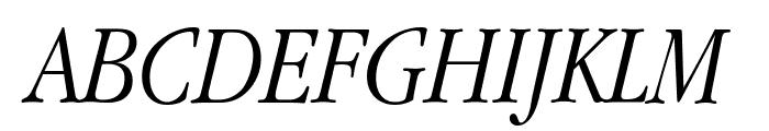 Apple Garamond Light Italic Font UPPERCASE