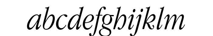 Apple Garamond Light Italic Font LOWERCASE