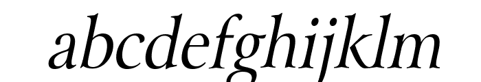 Array Thin Italic Font LOWERCASE