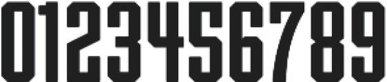 Archiva Bold Rounded Regular otf (700) Font OTHER CHARS