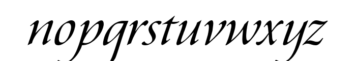 Aramis Italic Font LOWERCASE