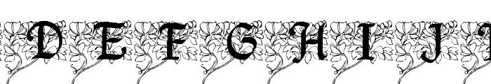 Arborial_Initials Font UPPERCASE