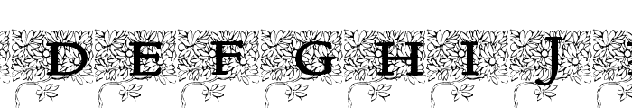 Arborial_Initials Font LOWERCASE