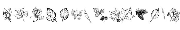 ArborisFolium Font LOWERCASE