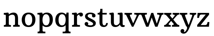 Arbutus Slab Regular Font LOWERCASE