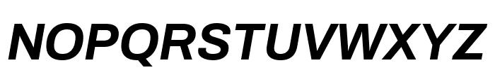 Archivo Bold Italic Font UPPERCASE