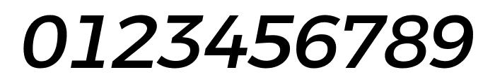 Argentum Novus Medium Italic Font OTHER CHARS