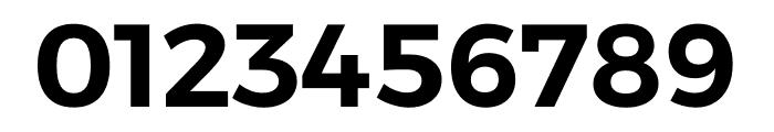 Argentum Sans SemiBold Font OTHER CHARS