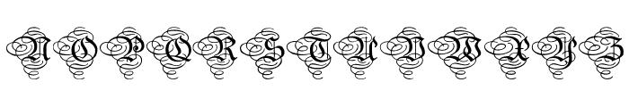 AristokratZierbuchstaben Font UPPERCASE