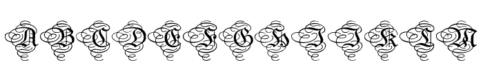 AristokratZierbuchstaben Font LOWERCASE