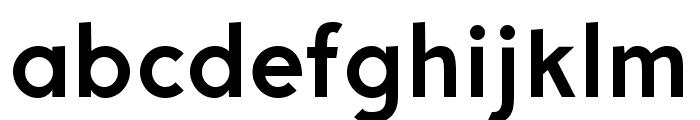 Aron Grotesque Bold Font LOWERCASE