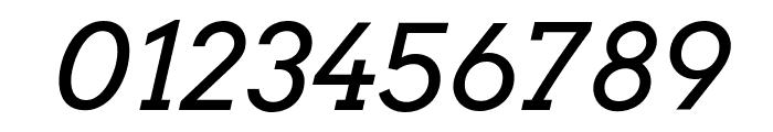 Arvo-Italic Font OTHER CHARS