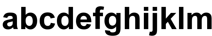 Arial Bold Font LOWERCASE