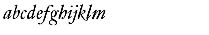 Archetype Italic Font LOWERCASE