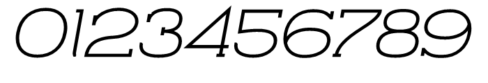 Archivio Italic Slab 900 Font OTHER CHARS