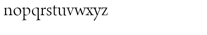 Arno Display Light Font LOWERCASE