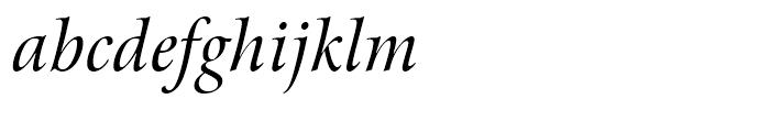 Arrus BT Italic OSF Font LOWERCASE