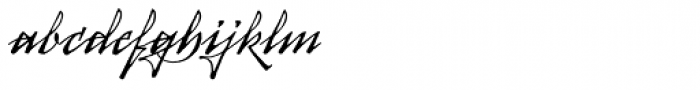 Arcana Std Manuscript Font LOWERCASE