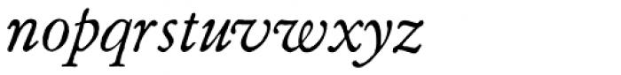 Archive Garamond Pro Italic Font LOWERCASE