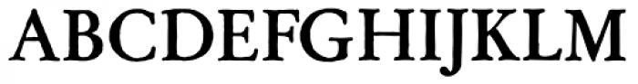 Archive Garamond Std Bold Font UPPERCASE