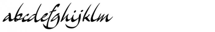 Archivo Font LOWERCASE