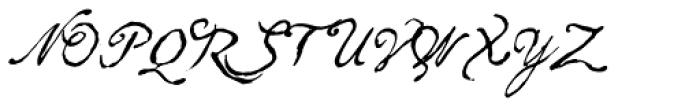 Arendahl Script Font UPPERCASE